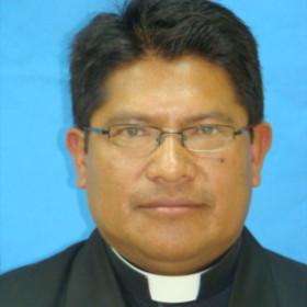 Braulio Patricio Vargas Palate
