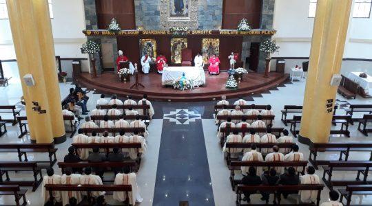 Peregrinación Diocesana